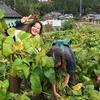 黒豆収穫体験ツアーその2(2016年11月1日)