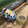 カフェ【MOU】開業準備編 隣人境界線戦争勃発阻止花壇登場!多肉植物超優秀!