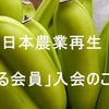 田んぼのイルミネーション