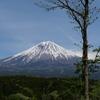 こいつぁ春から縁起がいいわぇ《#1》 ― 快晴の富士山と音止めの滝 -