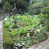 高知県の山深い郷にある定福寺