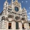 シエナ大聖堂の床の秘密