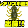 【DUO】人気のスレバスに効く虫系ワーム「レアリス 小忍虫」出荷!