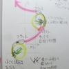 若桜氷ノ山スキー場(2021/01/25)