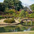 JR山手線「駒込」駅から徒歩2分(染井門まで)。国の特別名勝「六義園(りくぎえん)」へ行った話し。