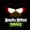 The best things for Angry Birds Soace