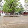 古代東海道 下総国 ⑨ 千葉寺と千葉寺廃寺 その1