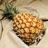 スナックパインの食べ方、時期、値段|沖縄特産のボゴールパインの魅力