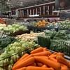 トロント・ワーホリ生活【アジア系スーパーマーケット/NATIONS FRESH FOODS編】