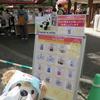 #上野動物園#サンキューシャンシャングッズ#シャンシャン