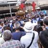 夏休み最終日〜深川八幡祭りと荒川ポタリング