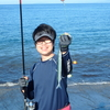 沼津サーフに良型サヨリ回遊中!