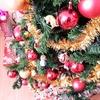 メキシコ☆いつまで続くのクリスマス期間!