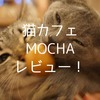 猫カフェMOCHA(モカ)新宿店に行ってきた感想!ここが天国か…