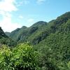 ドイアンカーン(Doi AngKang、安康山)その1