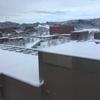 雪ってしんしんと降るもんじゃないんですか?