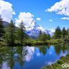 スイス・ツェルマット: 木に囲まれた湖・グリンジゼーへのハイキング