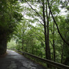 雨のみたらい渓谷(奈良県天川村)から上北山村へ