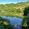 愛宕池(和歌山県紀の川)