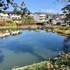 立野台公園の池(神奈川県座間)