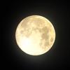 幸時現場「月明かり」