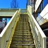 4月25日は「歩道橋の日」~歩道橋の1回の補修費用と 撤去費用は?(*´▽`*)~