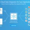 CData Cloudhub - MySQL インスタンスにSalesforce を仮想化