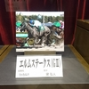 JRA 穴馬予想【関屋記念&エルムステークス】8月13日(日)