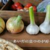 """【""""mocchiさんのお野菜""""で選ばれないことが目標】【70話】"""