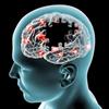 点滅する光がアルツハイマー病の治療に有効か