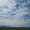 ◆天気は ゆっくり下り坂…7/30