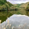 新池(岡山県岡山)