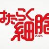 【はたらく細胞】第1話 生物知識ノートまとめ!
