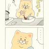 ネコノヒー「カップ焼きそば」/instant yakisoba