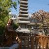 千本ゑんま堂(引接寺)の紫式部供養塔。