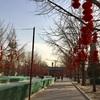 地壇公園(ディータン・ゴンユエン)を散策