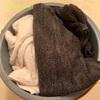 【梅雨】タオルの洗濯【お湯かけ5分】