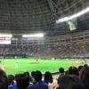 4/15野球観戦