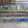 【家庭菜園】オクラと大きなししとうの種を蒔きました
