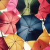 傘と思春期男子