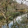 恋地下池(広島県大崎上島)