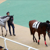 JRA「地方転厩」「デビュー延期」悲劇の主役に朗報!? 新潟記念(G1)ブラヴァス勝利に、アノ馬たちも続けるか