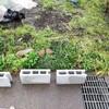農作業用小屋の建立!単管パイプとポリカでDIY
