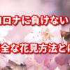 コロナ騒動でも花見をしたい!安全に花見をする方法