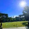 日曜日 天気が良かったので自転車でさわやかにラララロ♪と新宿中央公園に行きました