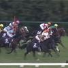 【レース回顧】マイルチャンピオンシップ 1着インディチャンプ