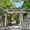 宗像神社の新緑と青もみじ2018。