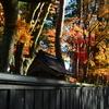秋田日記⑩ 2019.11.17.