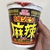 カップヌードル 花椒シビうま激辛麻辣味 ビッグを食べました!【感想】
