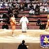 大相撲11月場所7日目。